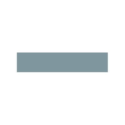 client-logo-vestel